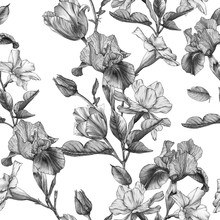 Monochrome Floral Seamless Pattern With Watercolor Irises, Tulips, Narcissus And White Flowers.