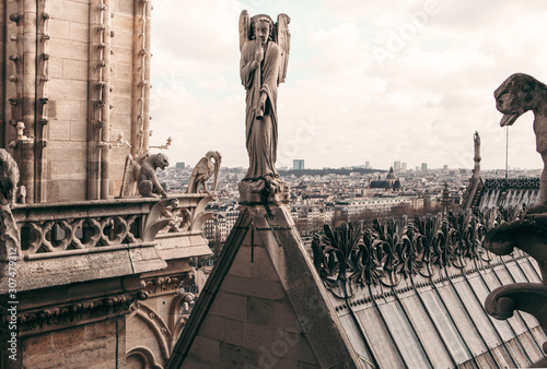 Foto op Aluminium Historisch mon. Notre Dame Cathedral Rooftop In Paris France