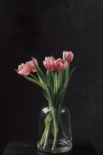Jar Vase Of Tulips On Black Background