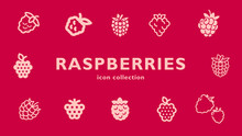 Raspberries Icon Collection (vector Fruits)