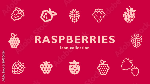 Canvas Print raspberries icon collection (vector fruits)
