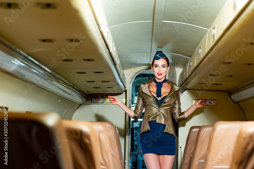 Attractive young woman flight attendant stewardess Canvas Print