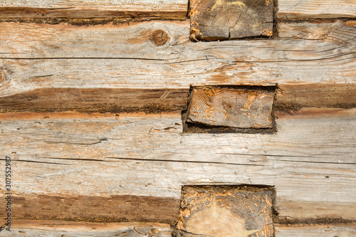 Wooden log wall environmentally friendly house Canvas Print
