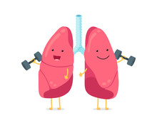 Cute Cartoon Funny Lungs Character With Dumbbells. Strong Smiling Lung. Human Respiratory System Happy Internal Breath Organ Mascot. Medical Healthy Anatomy Flat Vector Illusrtation