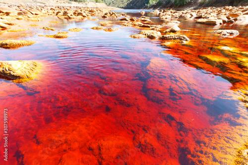 Foto auf AluDibond Rot Red water in Rio Tinto, Huelva, Spain