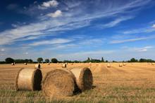 Summer, Straw Bales In Wheat F...