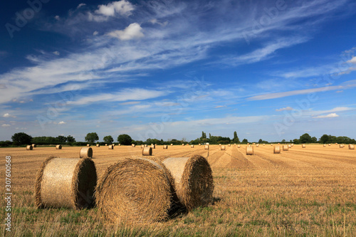 Valokuvatapetti Summer, Straw bales in wheat fields near Ely town, Fenland, Cambridgeshire, Engl