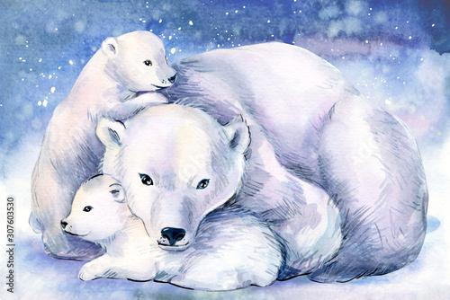 niedzwiedz-polarny-z-misiem-akwarela-ilustracja