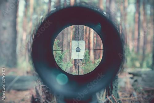 Cuadros en Lienzo Sniper gun scope view, target