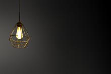 Decorative Ceiling Lights / Ha...