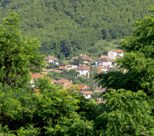 Houses In The Foot Of The Hill Seen Throught Green Tree Branches.