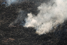 The Agricultural Waste Burning...