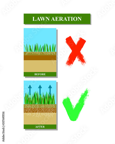 Valokuvatapetti Lawn aeration before and after, vector illustration.