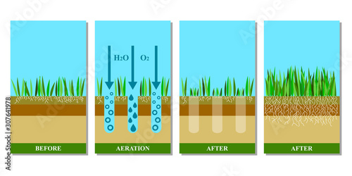 Lawn aeration before and after, vector illustration. Tablou Canvas