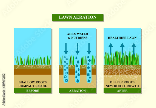Lawn aeration before and after, vector illustration. Fototapeta