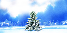 Pine Trees Tree In The Snow On Background With Snowy Fir Trees, Hand Drawn Watercolor Illustration, Christmas Card, Winter Landscape