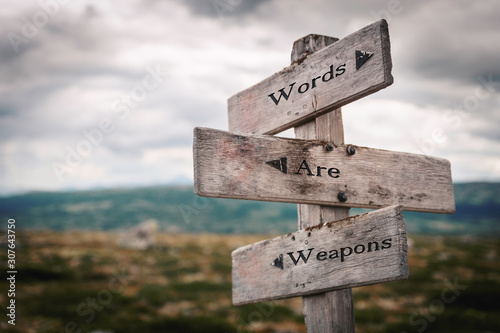 Fotografía Words are weapons signpost outdoors in nature