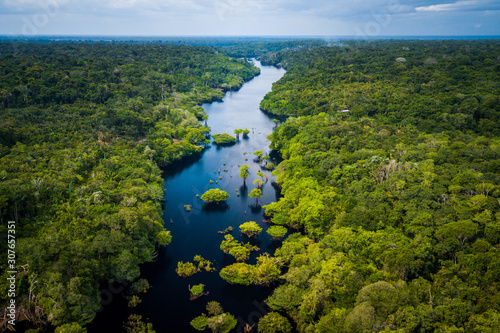 Photo Amazon Rainforest in Anavilhanas National Park, Amazonas - Brazil
