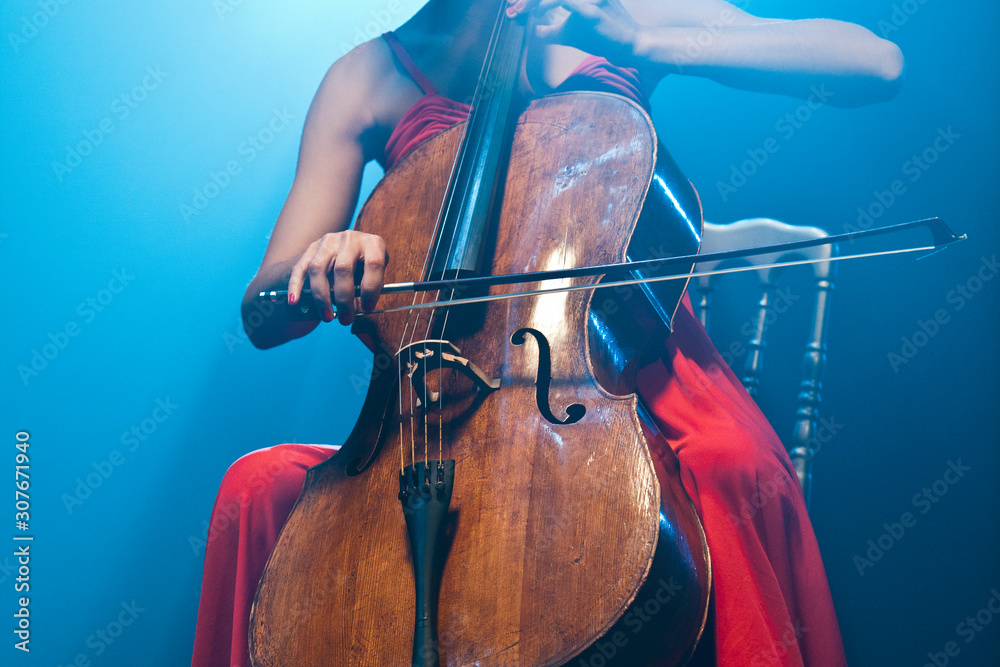 Fototapeta Playing Cello