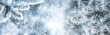 Leinwanddruck Bild - Pine tree branches covered frost in snowy atmosphere. Winter panoramic banner with snowy pine branches