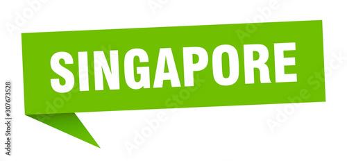 Singapore sticker. Green Singapore signpost pointer sign Canvas Print