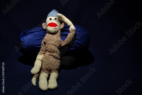 Studio - Sock Monkey 0983