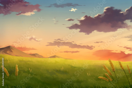 Afternoon sunset sky clouds - Anime Background.	 - 307690999