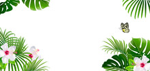 Banner Of Tropical Plants And ...