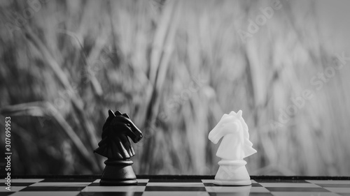фотография black and white horse chess stand encounter on a chessboard