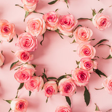 Round Frame Border Of Pink Rose Flower Buds On Pink Background. Mockup Blank Copy Space. Flat Lay, Top View Floral Composition.