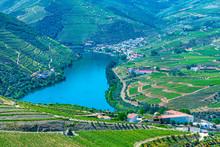 Vineyards And Villages At Slop...