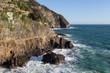Landscape near Riomaggiore in the National Park of Cinque Terre, Liguria, Italy.