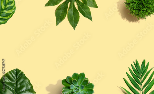 Tropical green leaves from above - overhead view