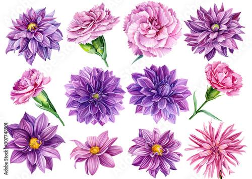 Photo large set of flowers, watercolor illustration, botanical painting, beautiful bou