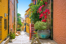 Streets Of Collioure, France