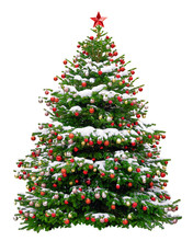 Beautiful Christmas Tree Decor...