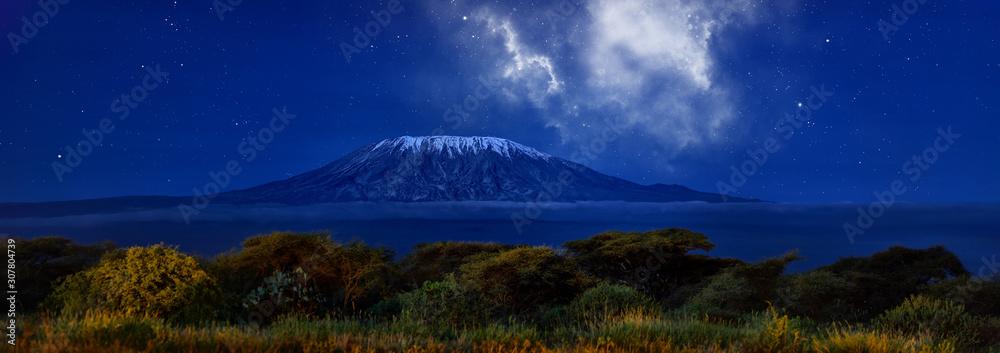 Fototapeta Stars over Mount Kilimajaro. Panoramic, night scenery of snow capped highest african mountain, lit by full moon against deep blue night sky with stars. Savanna view, Amboseli national park, Kenya.