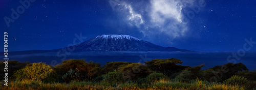 Stars over Mount Kilimajaro Canvas Print