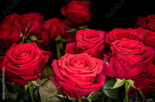 A bouquet of red roses macro on black and blurred background, fine art still life vintage painting style close-up