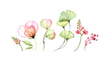 Set Watercolor Elements Of Tra...