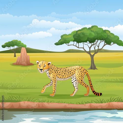 Cartoon cheetah in the savannah Wall mural