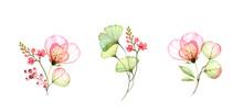 Watercolor Transparent Rose Bo...
