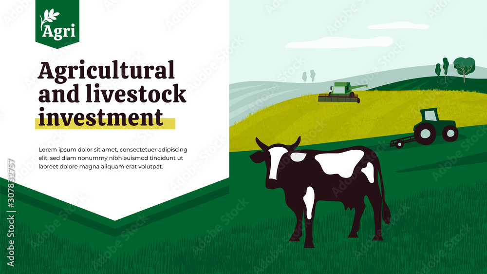 Fototapeta Illustration of agriculture with tractor, combine harvester and cow. Banner of agricultural and livestock investment, technology and development in agri business. Background for print, flyer, ad, web.