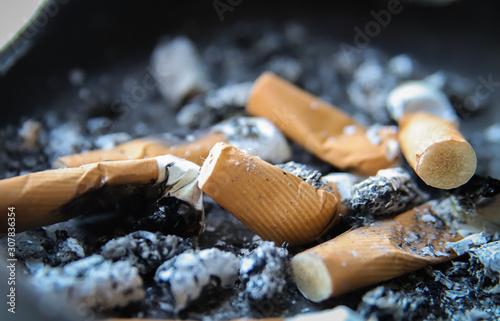 Ashtray full of smoked cigarettes, extreme close up of ashtray full of cigarette Canvas Print