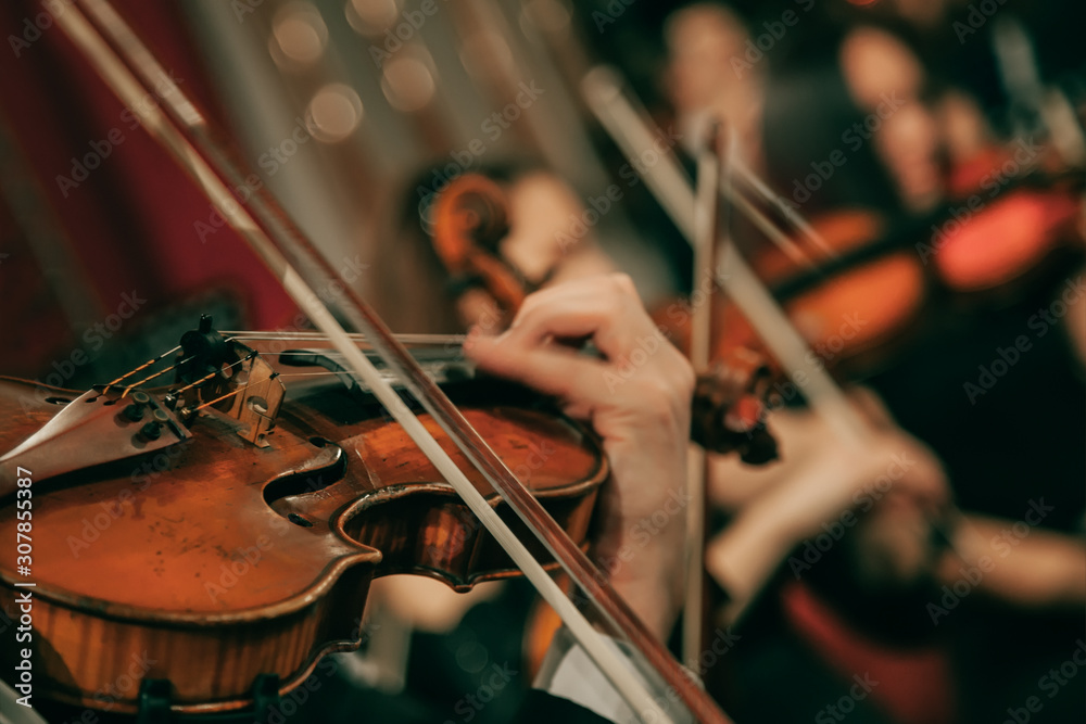 Fototapeta Symphony orchestra on stage, hands playing violin. Shallow depth of field, vintage style.