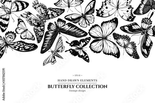Tablou Canvas Design with black and white morpho menelaus, cethosia biblis, papilio antimachus