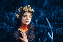 Colorof Year, 2020. Beautiful Fantasy Elf Woman Outdoor, Toned Classic Blue Photo