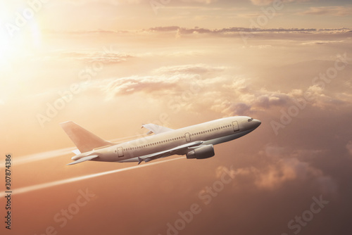 On vacation - flight by airliner Wallpaper Mural