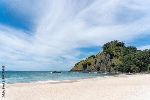 Fotografie, Obraz View of New Chums Beach in Coromandel Peninsula, New Zealand