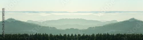 niesamowity-panoramiczny-krajobraz-mgly-w-czarnym-lesie